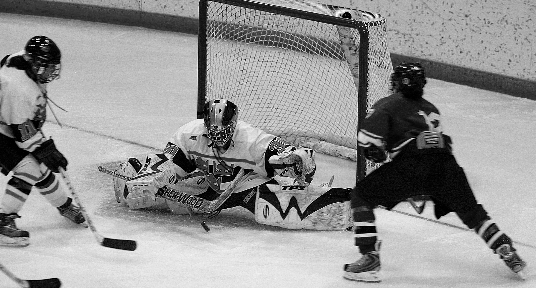 Sophomore goalies Sarah Windhorst (pictured above) and Bre Scavo will be vital to a long tournament run.