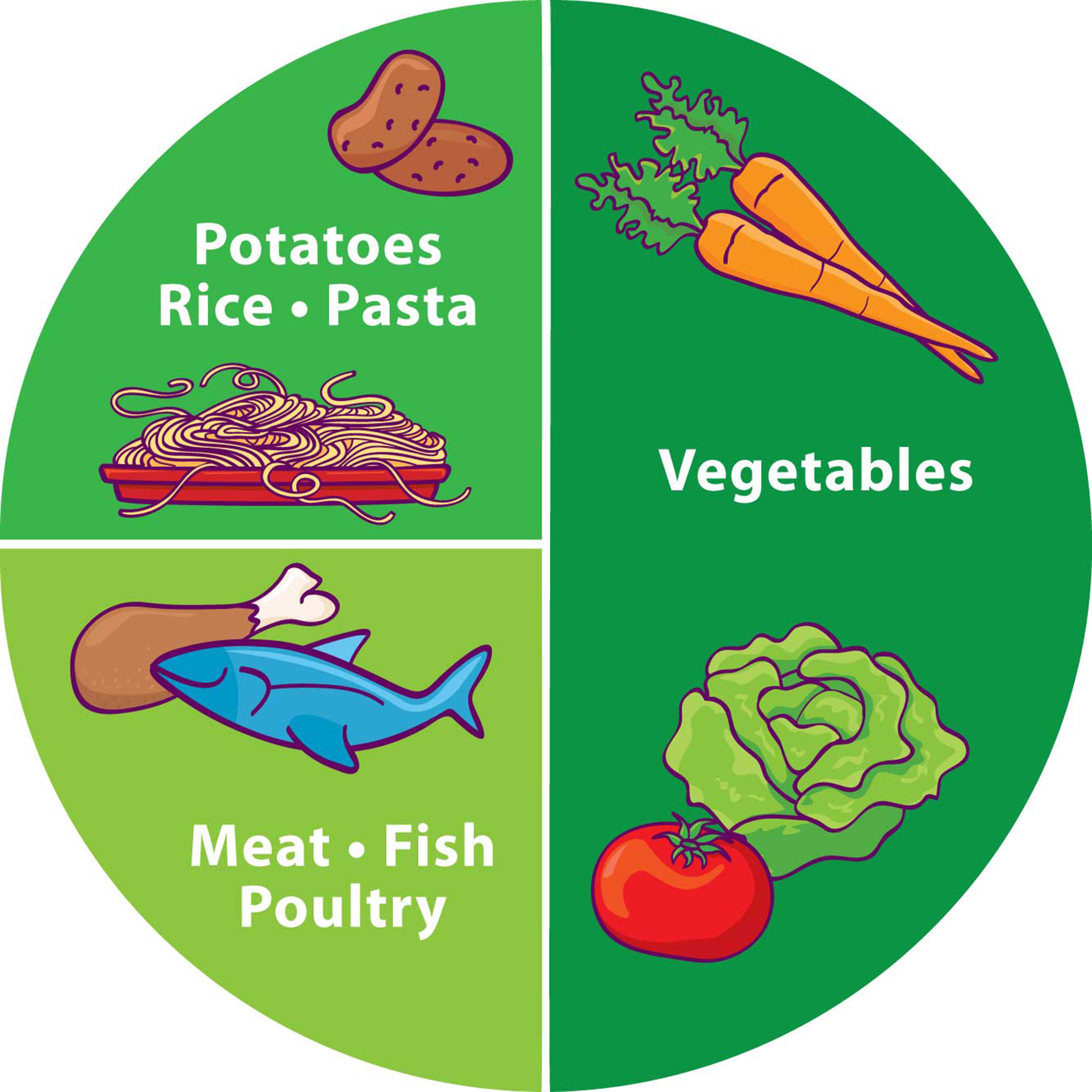 Healthy Food Portion Plate