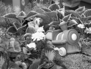 Books in Bloom Flower arrangement depicts The Little Engine That Could. Gustavus Marketing and Communications