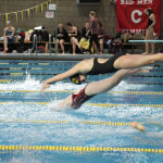 "A Gustavus Swimmer jumps into the pool during a leg of a relay in the ""Race for Grace"" on Nov. 21st. The Women's team is looking to repeat as MIAC champions, as the Men's team looks for a piece of the action."
