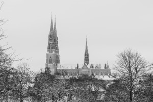 Uppsala Cathedral is a cathedral dating back to the late 13th century currently controlled by the Lutheran Church of Sweden.