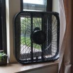 A fan.