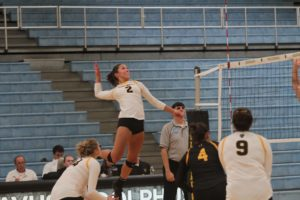 Sophomore Kate Holtam prepares to spike the ball during a game Oct. 20.